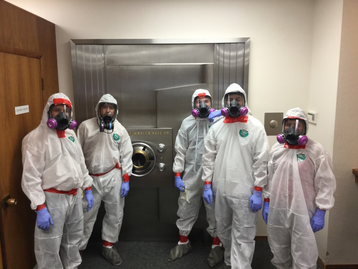mold mitigation team