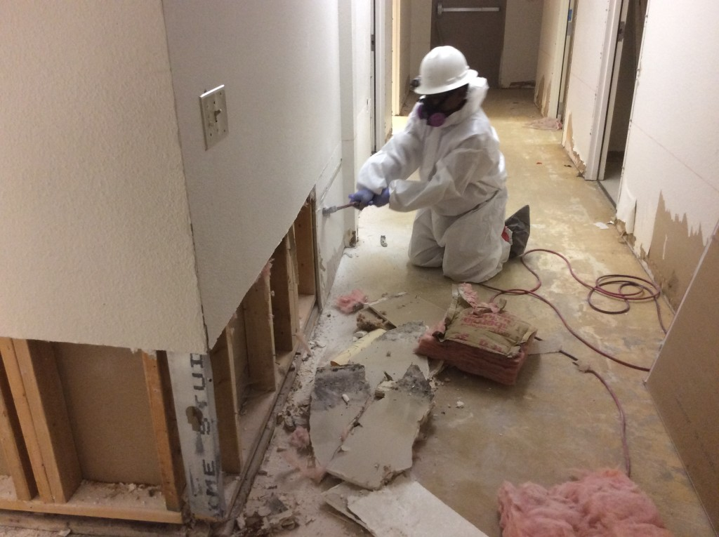 CRS mold demolition remediation mitigation