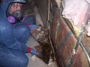 CRS mold mitigation